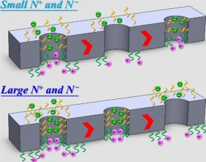 """Y. Lin, J. P. Hsu,* L. H. Yeh,* """"Rectification of Ionic Current in Nanopores Functionalized with Bipolar Polyelectrolyte Brushes"""", Sensors and Actuators B: Chemical, 258, 1223-1229 (April 2018)."""