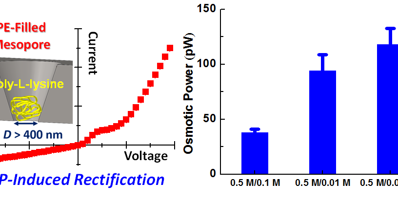 "1. C. Y. Lin, C. Combs, L. H. Yeh,* Y. S. Su, Z. S. Siwy, ""Rectification of Concentration Polarization in Mesopores Leads To High Conductance Ionic Diodes and High Performance Osmotic Power"", Journal of the American Chemical Society, 141, 3691-3698"